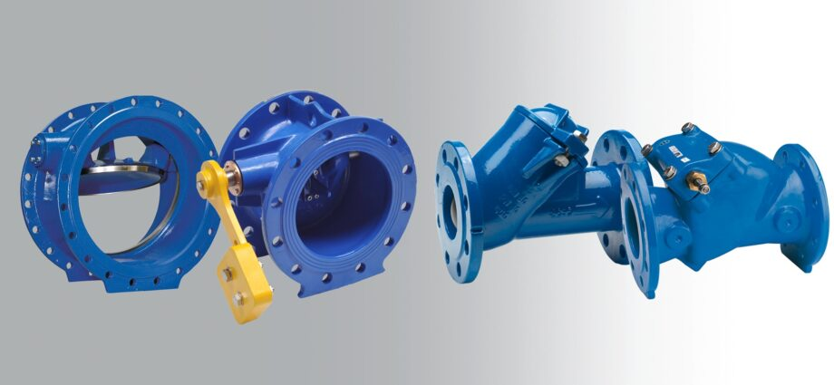 What is Check Valves